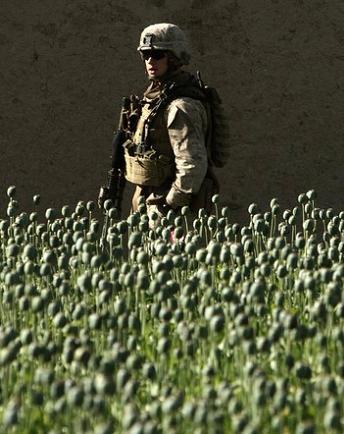 Drogue Afgha